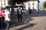 Međunarodni dan zaštite životinja, Buddy, Zaklada Kajo Dadić (11)