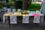 Međunarodni dan zaštite životinja, Buddy, Zaklada Kajo Dadić (5)